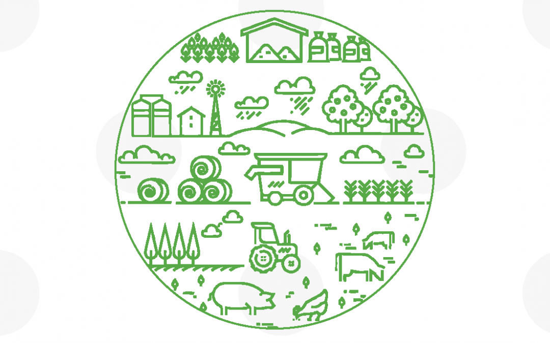 """Conferencia """"Os ciclos virtuosos da materia orgánica, metabolismos e sistemas alimentarios"""" – Ciclo de conferencias online Luis Asorey 2020"""